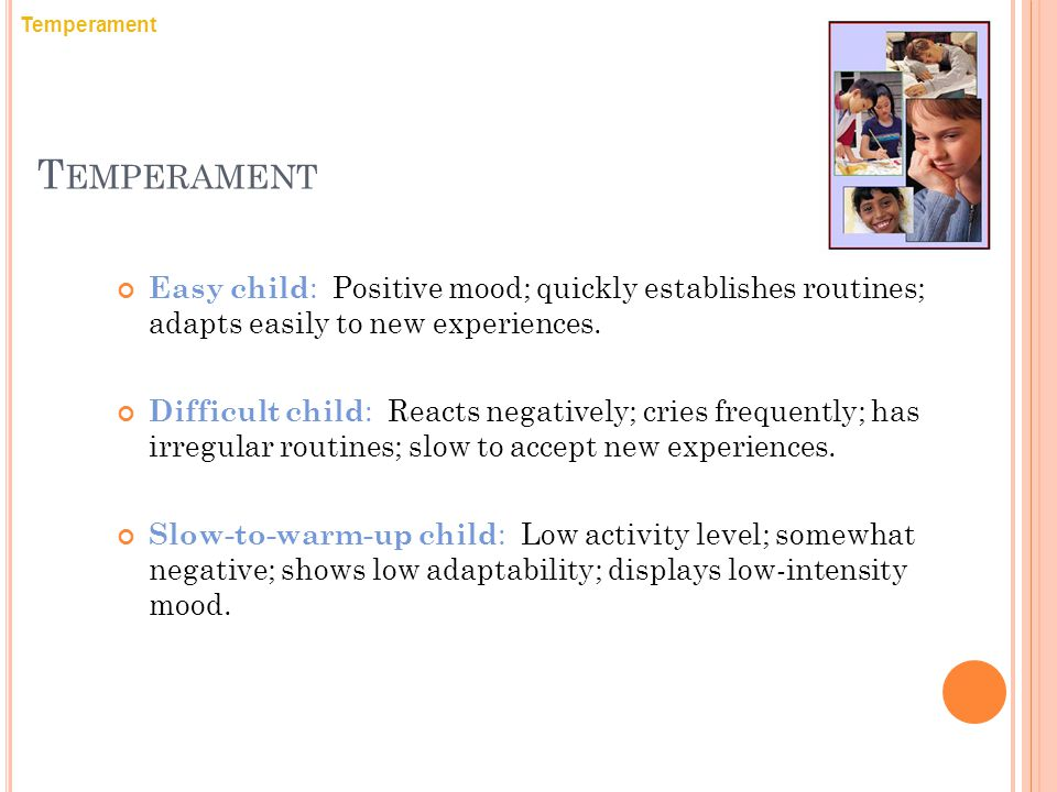 Temperament Temperament. Easy child: Positive mood; quickly establishes routines; adapts easily to new experiences.