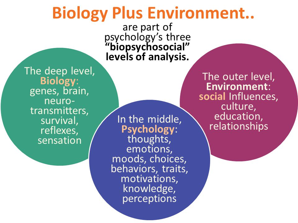 Biology Plus Environment..