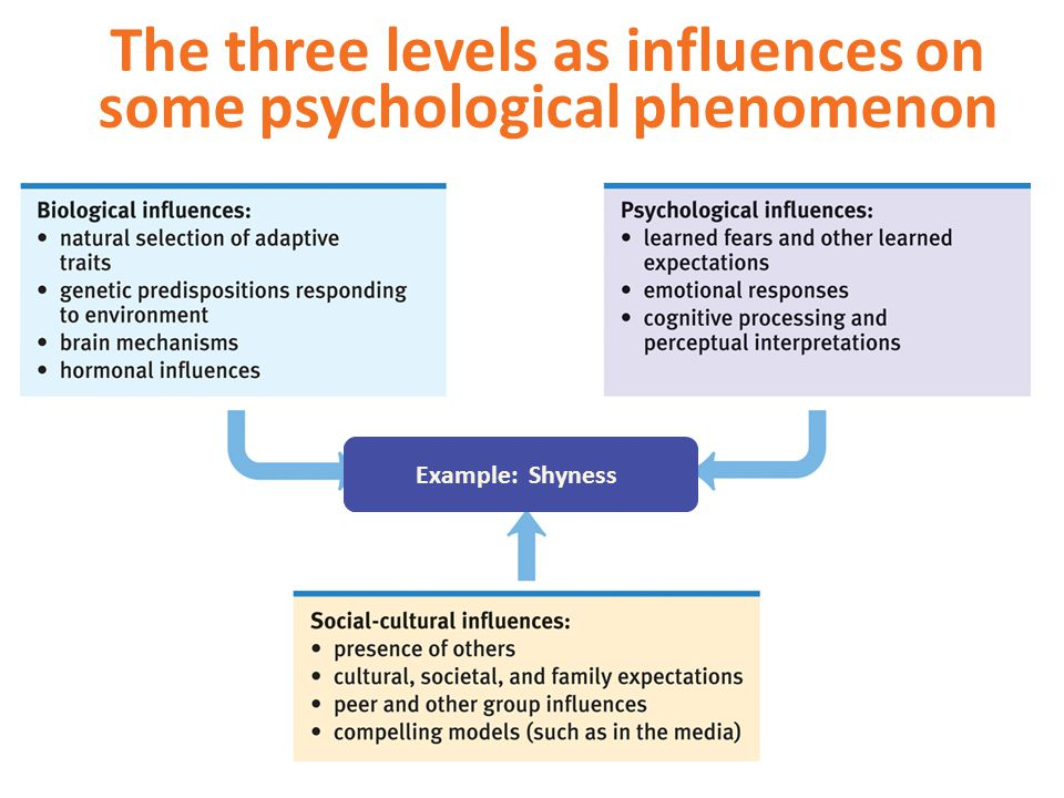 The three levels as influences on some psychological phenomenon