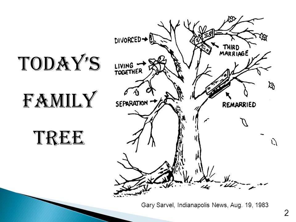 Today's Family Tree Gary Sarvel, Indianapolis News, Aug. 19, 1983