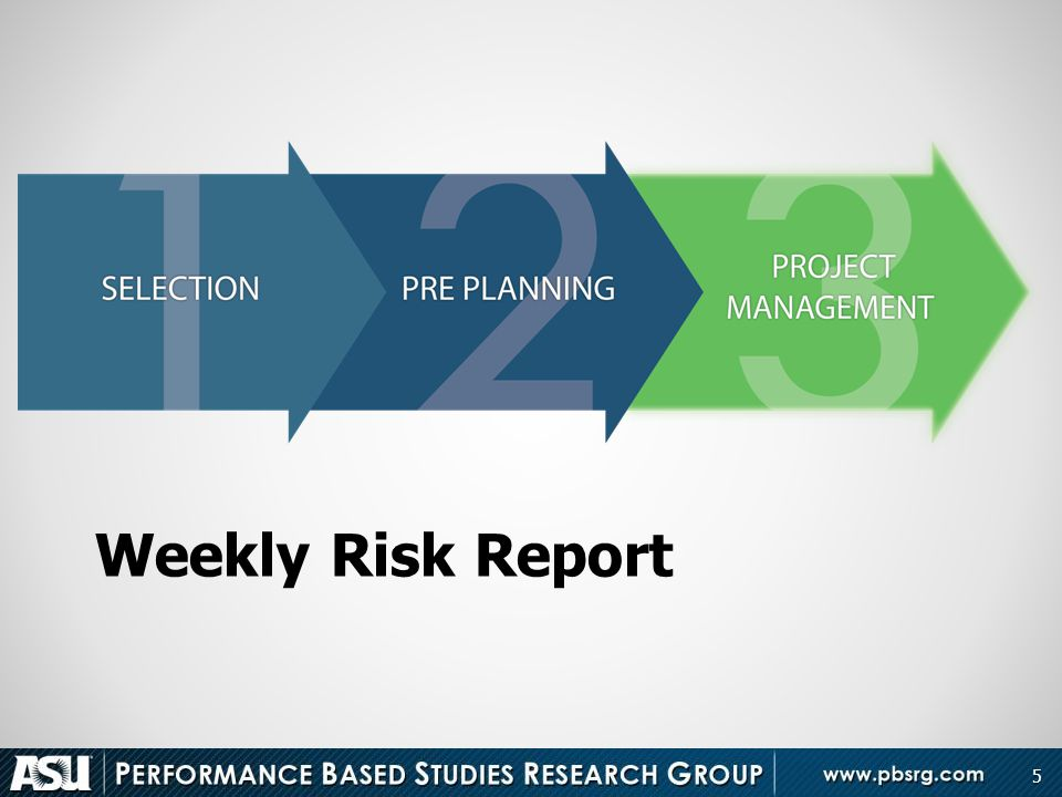 Weekly Risk Report