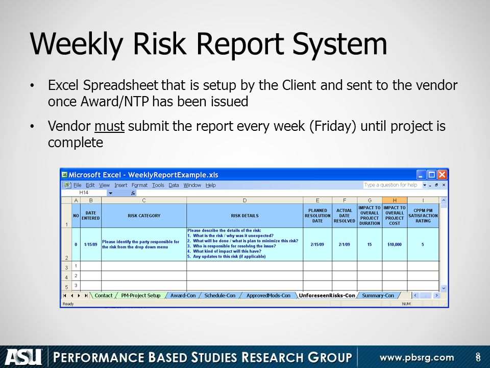 Weekly Risk Report System