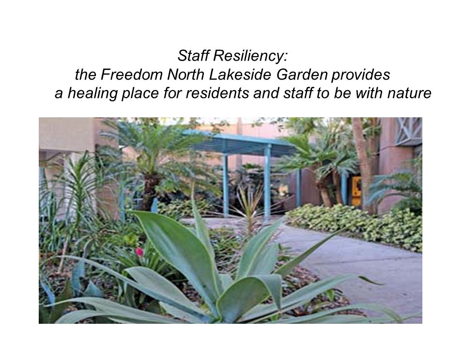 the Freedom North Lakeside Garden provides
