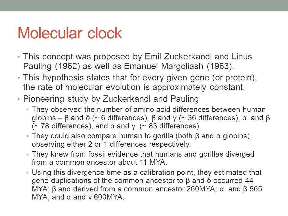 Molecular clock This concept was proposed by Emil Zuckerkandl and Linus Pauling (1962) as well as Emanuel Margoliash (1963).