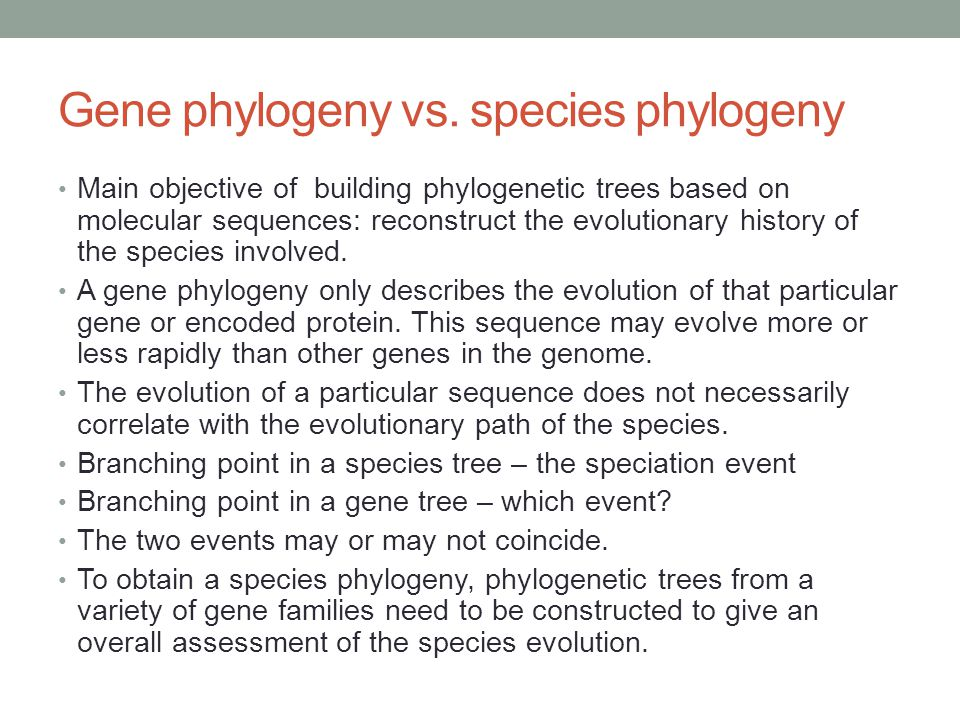 Gene phylogeny vs. species phylogeny