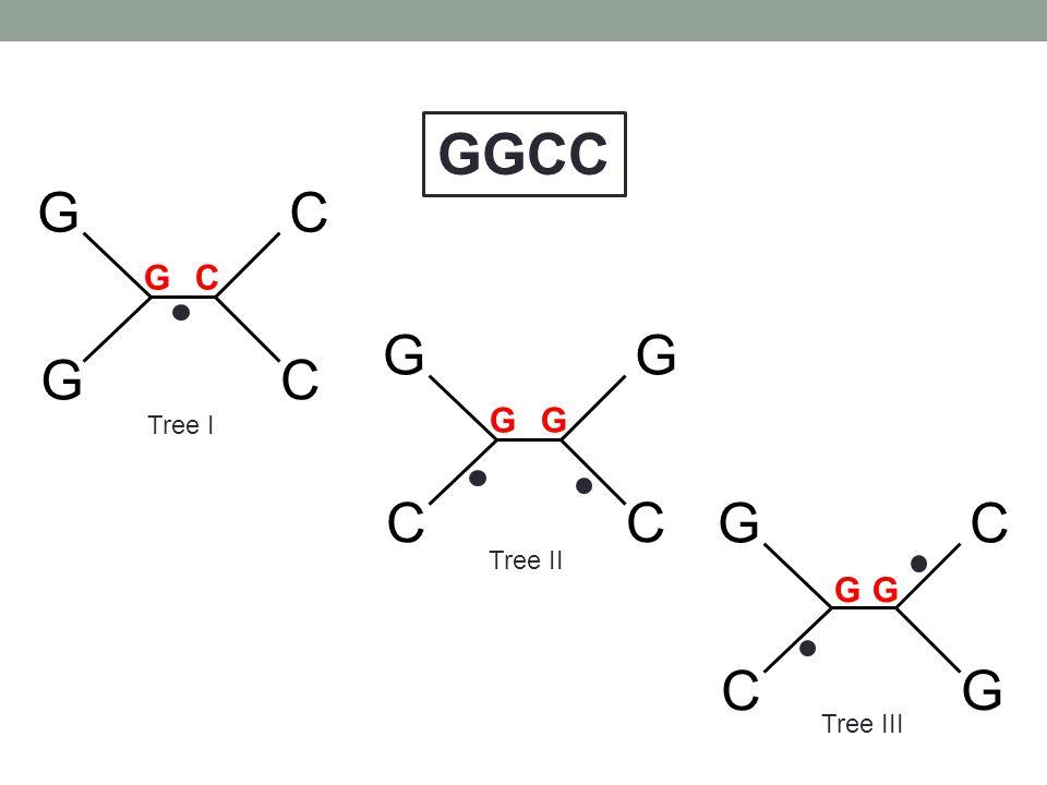 GGCC G C G C G C Tree I G G G C Tree II G G Tree III