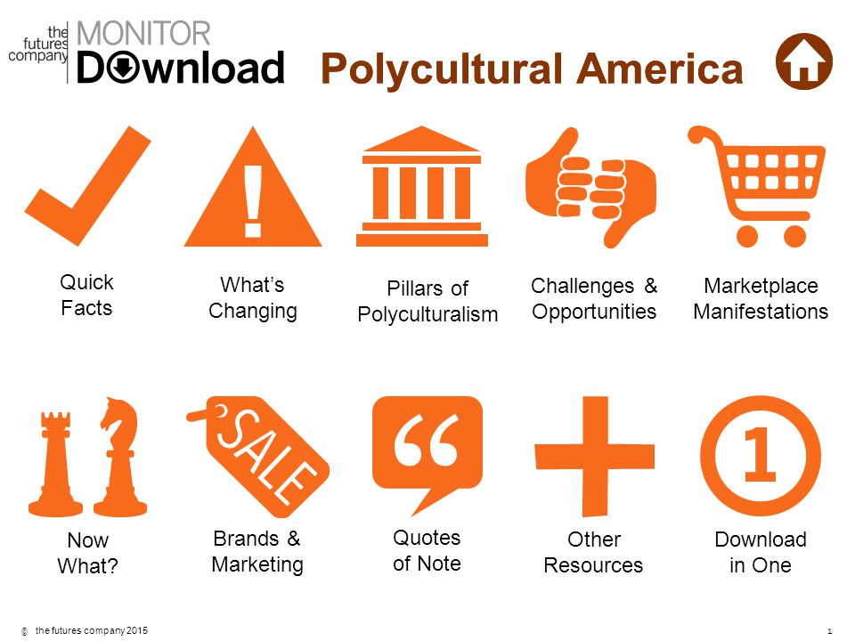 Polycultural America Quick Facts What's Changing