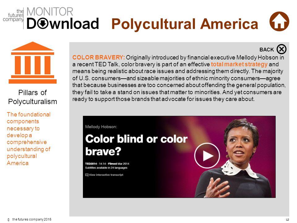 Pillars of Polyculturalism