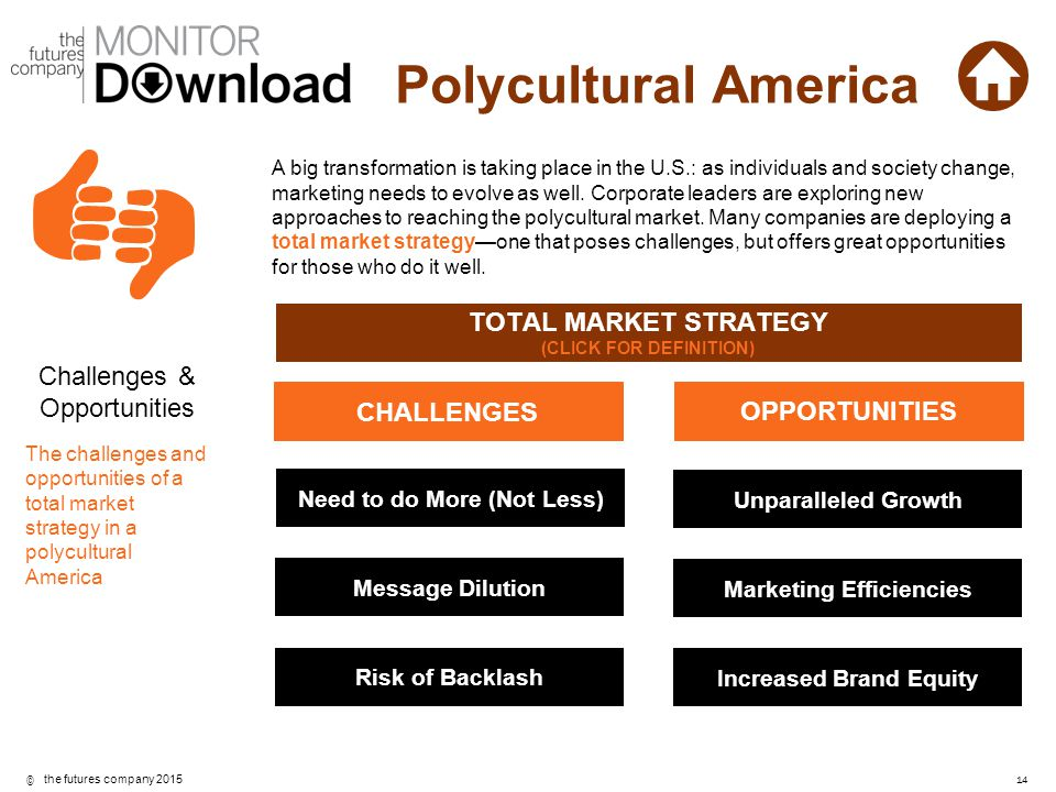 TOTAL MARKET STRATEGY CHALLENGES OPPORTUNITIES