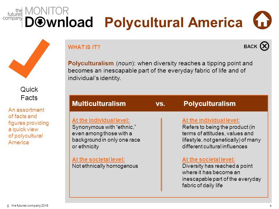 Multiculturalism vs. Polyculturalism
