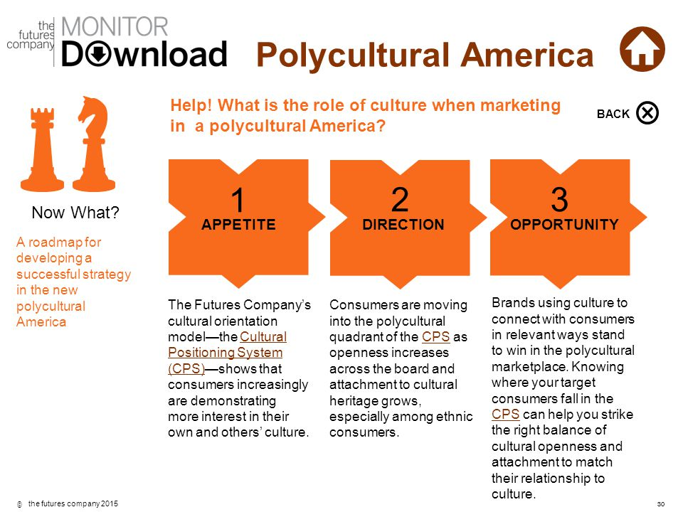 Help! What is the role of culture when marketing in a polycultural America
