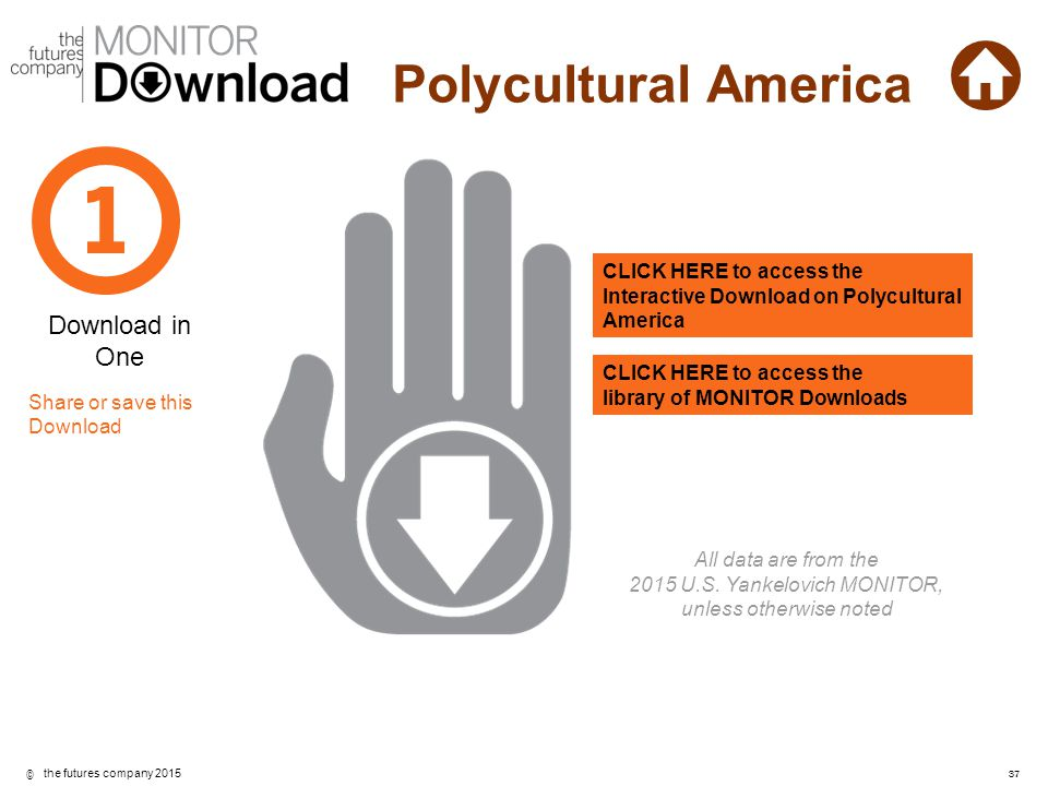 CLICK HERE to access the Interactive Download on Polycultural America