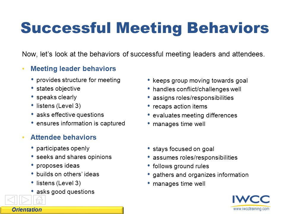 Successful Meeting Behaviors