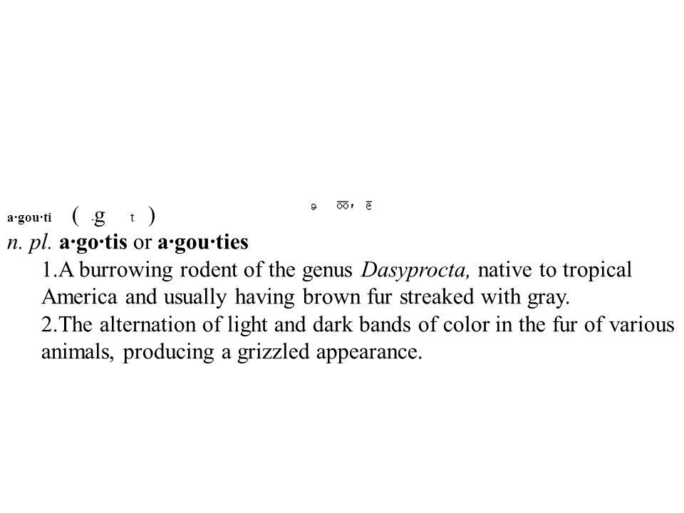 a·gou·ti ( -g t ) n. pl. a·go·tis or a·gou·ties