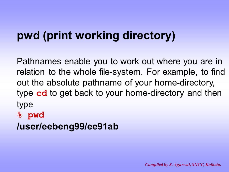 pwd (print working directory)