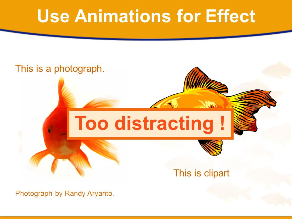 Use Animations for Effect