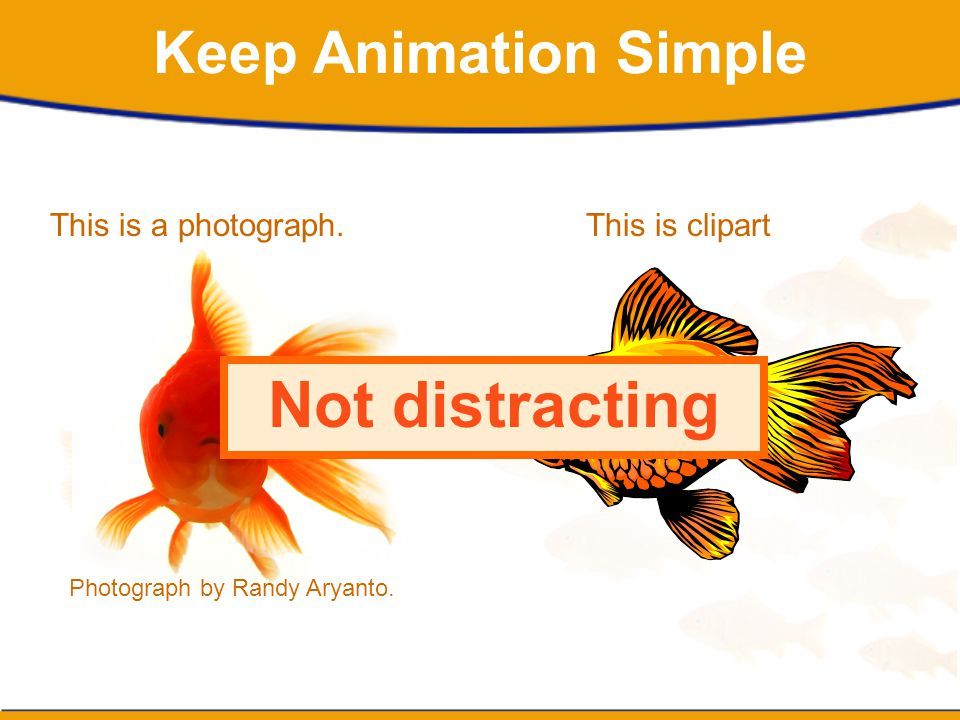 Not distracting Keep Animation Simple This is a photograph.