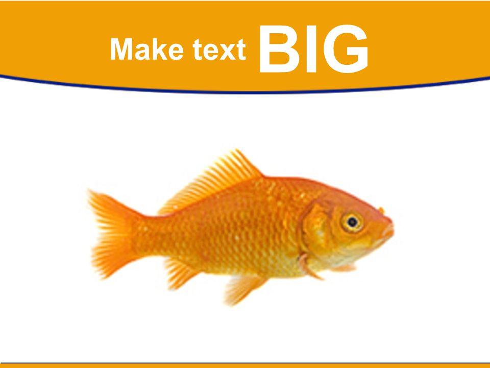 BIG Make text