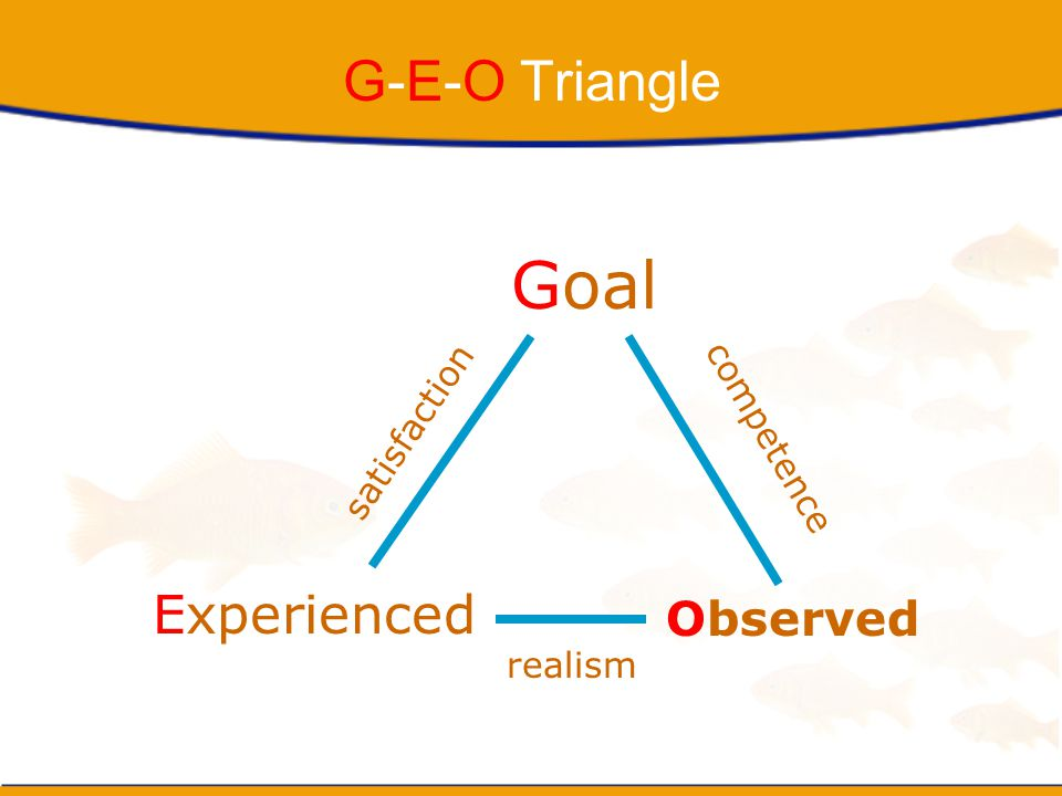 Goal G-E-O Triangle Experienced Observed satisfaction competence
