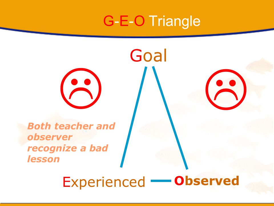   Goal G-E-O Triangle Experienced Observed