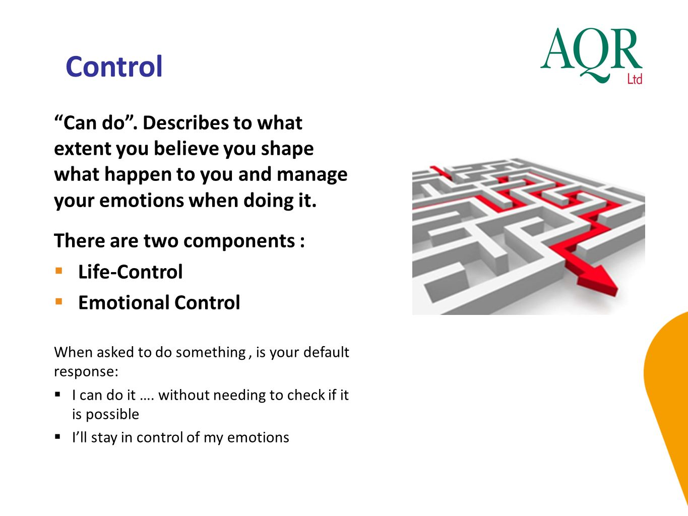 Control Can do . Describes to what extent you believe you shape what happen to you and manage your emotions when doing it.