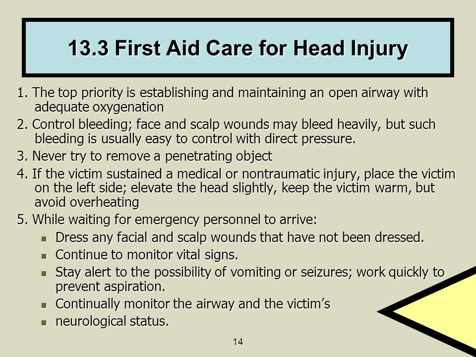 13.3 First Aid Care for Head Injury