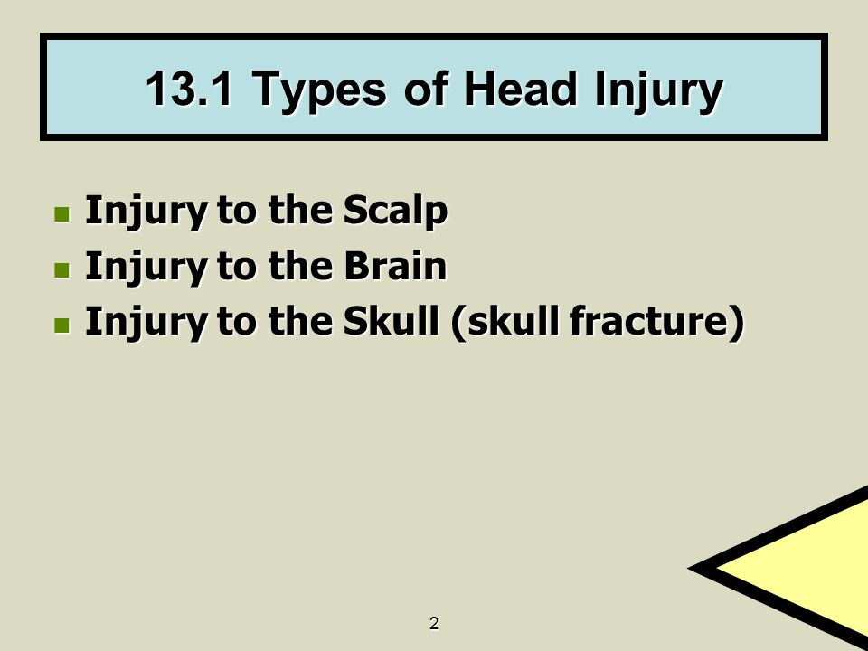 13.1 Types of Head Injury Injury to the Scalp Injury to the Brain