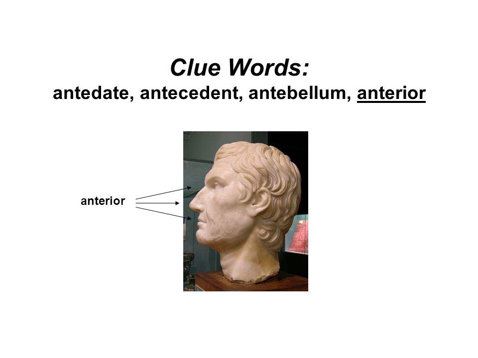 Clue Words: antedate, antecedent, antebellum, anterior