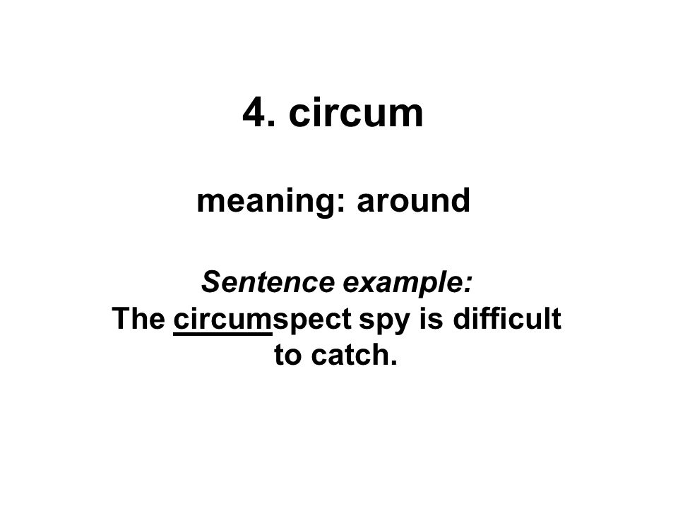 Sentence example: The circumspect spy is difficult to catch.