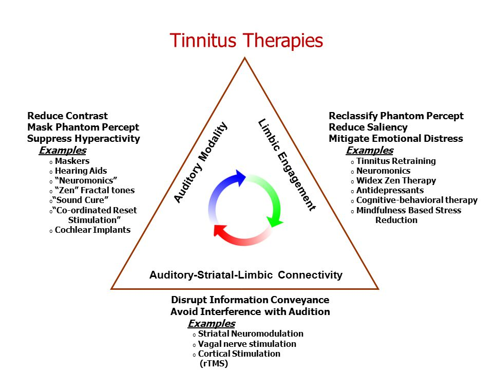Tinnitus Therapies Auditory Modality Limbic Engagement