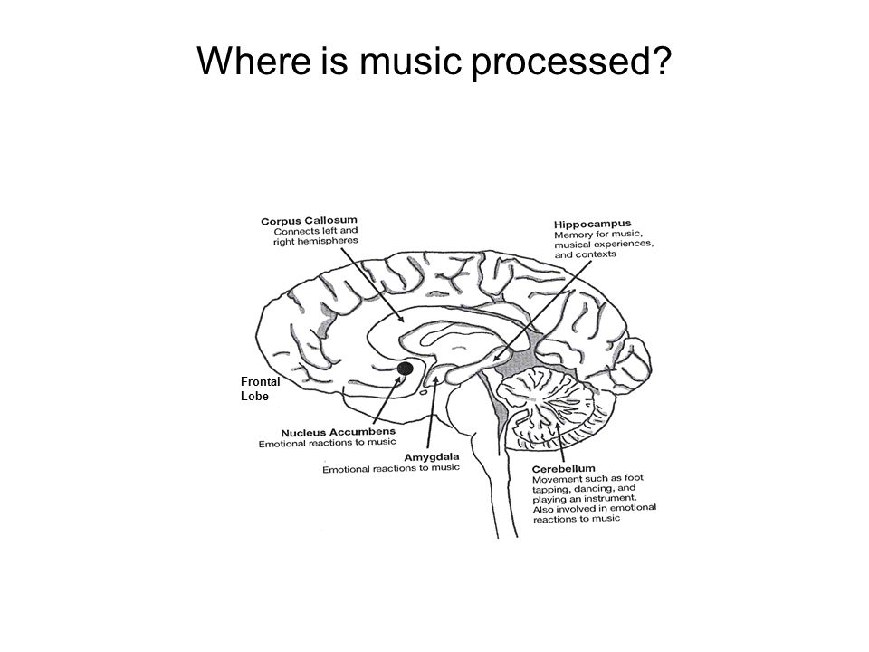 Where is music processed