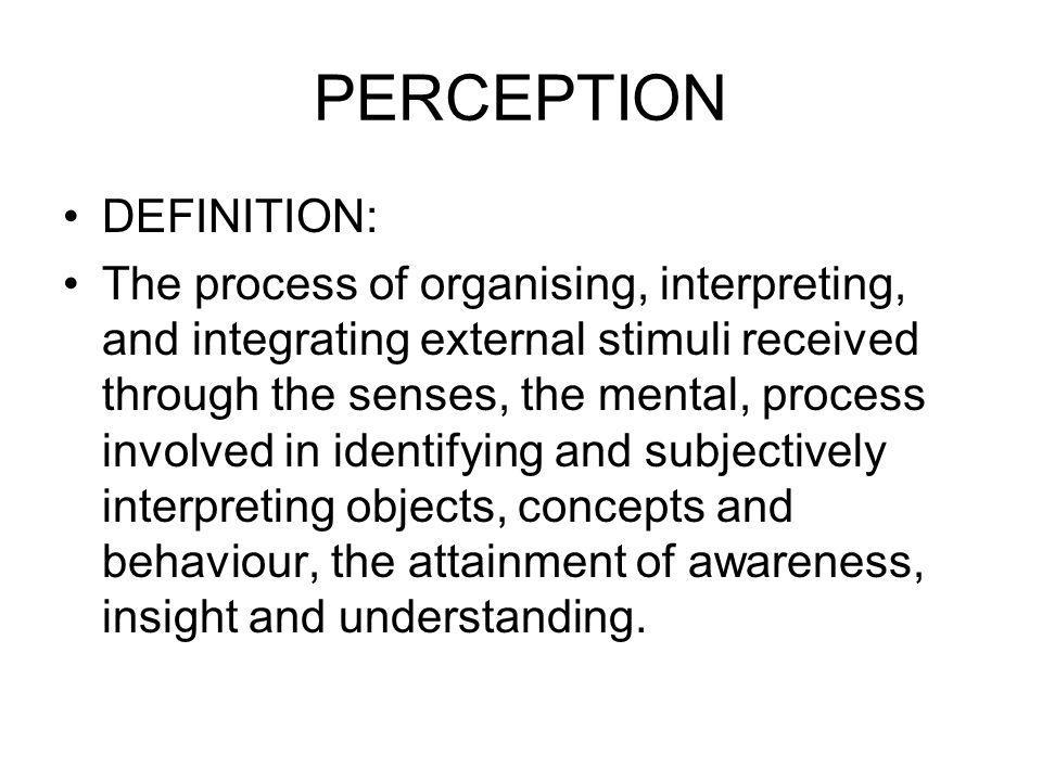 PERCEPTION DEFINITION:
