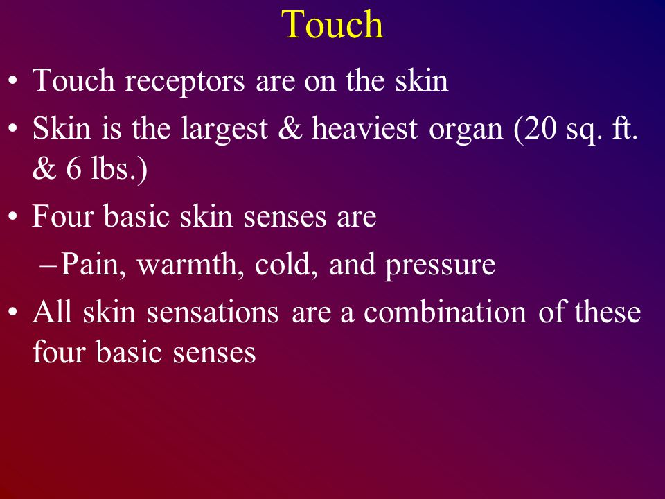 Touch Touch receptors are on the skin