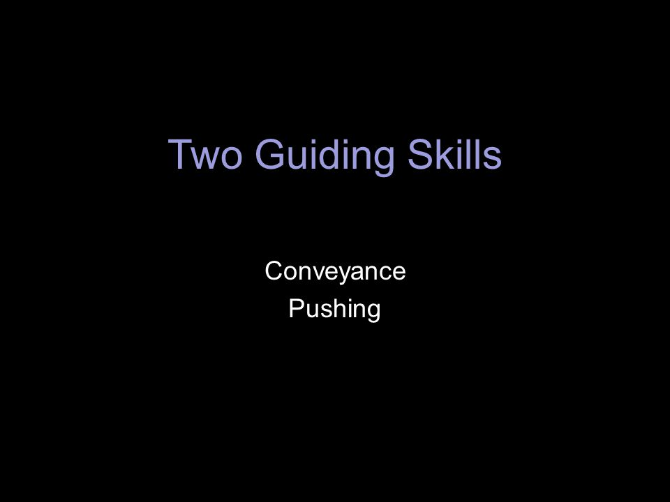 Two Guiding Skills Conveyance Pushing