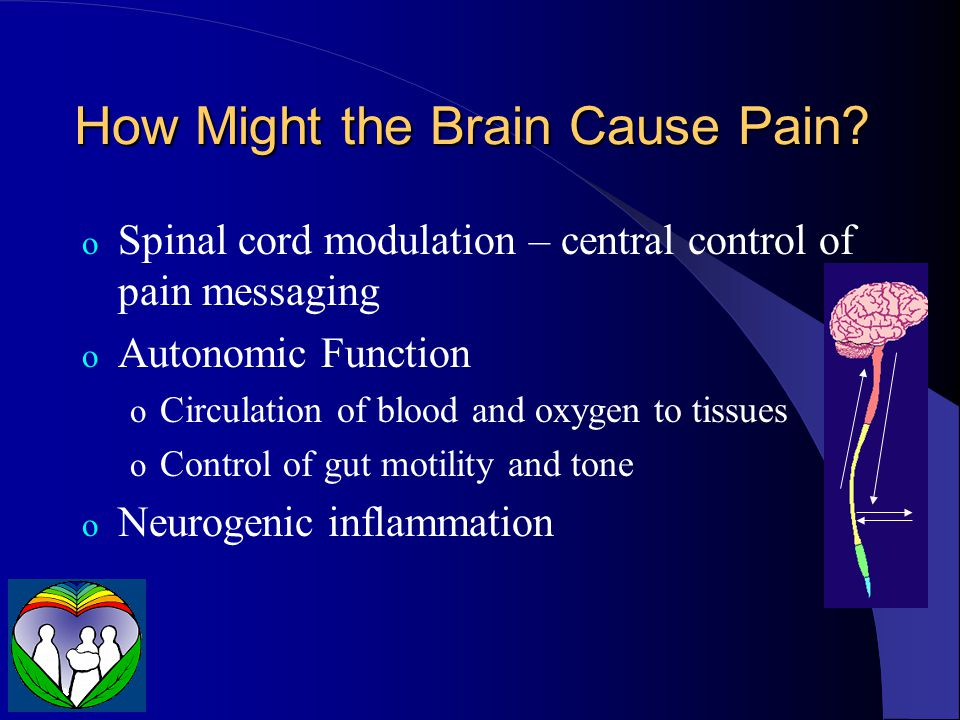 How Might the Brain Cause Pain