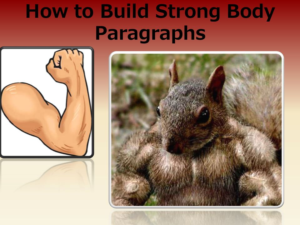 How to Build Strong Body Paragraphs