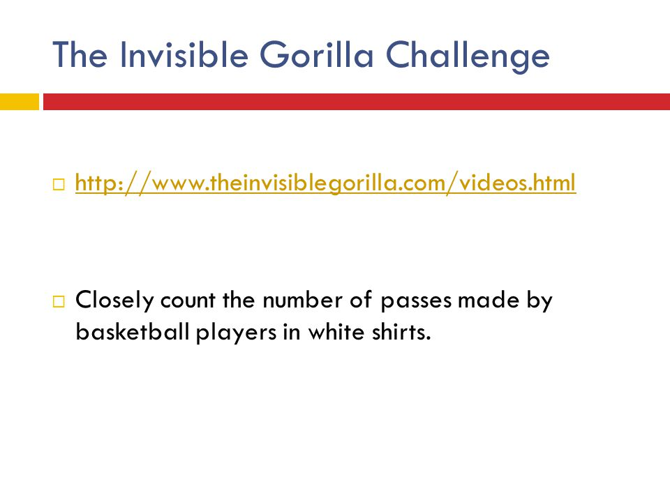 The Invisible Gorilla Challenge