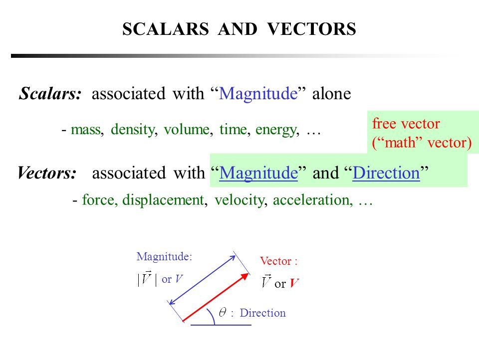 Scalars: associated with Magnitude alone