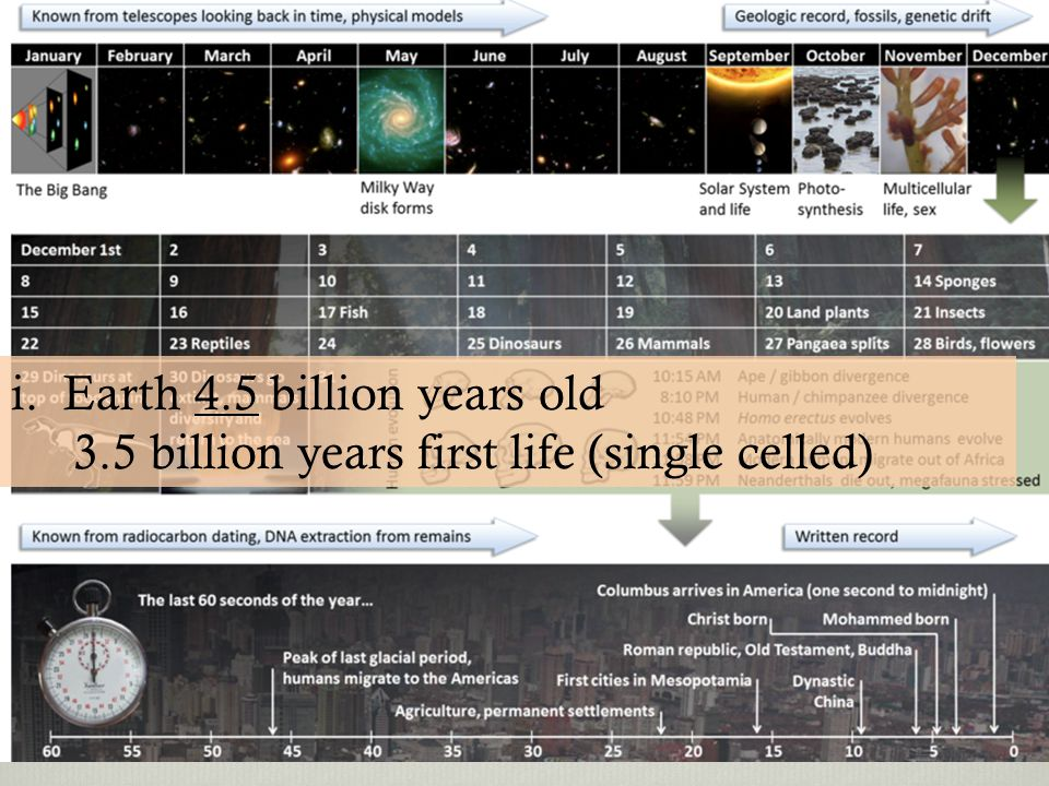 i. Earth 4.5 billion years old