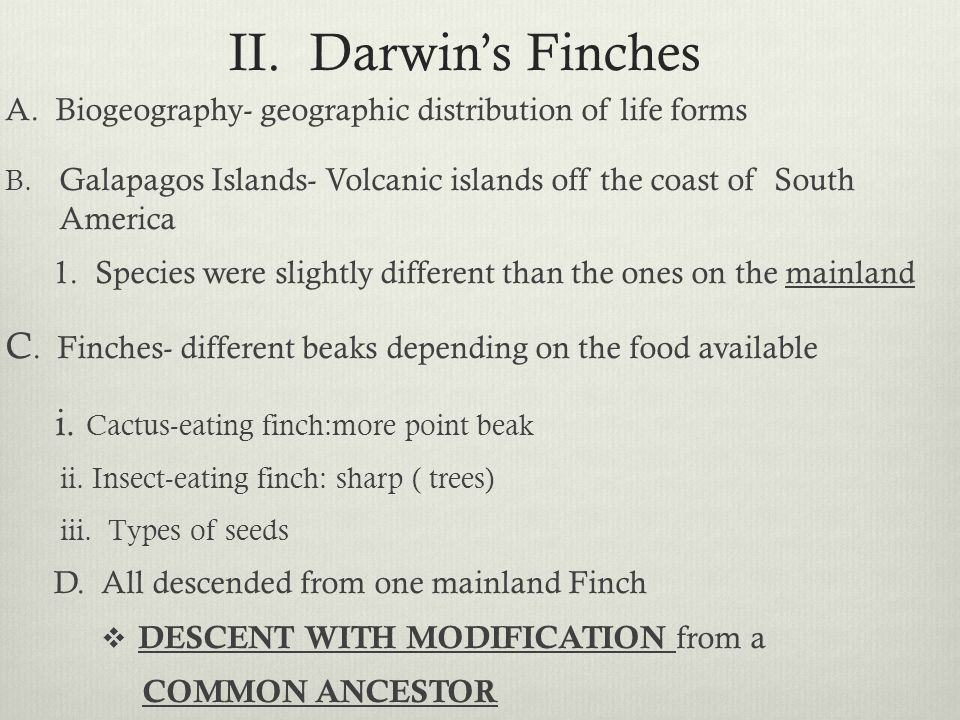 II. Darwin's Finches A. Biogeography- geographic distribution of life forms. Galapagos Islands- Volcanic islands off the coast of South America.
