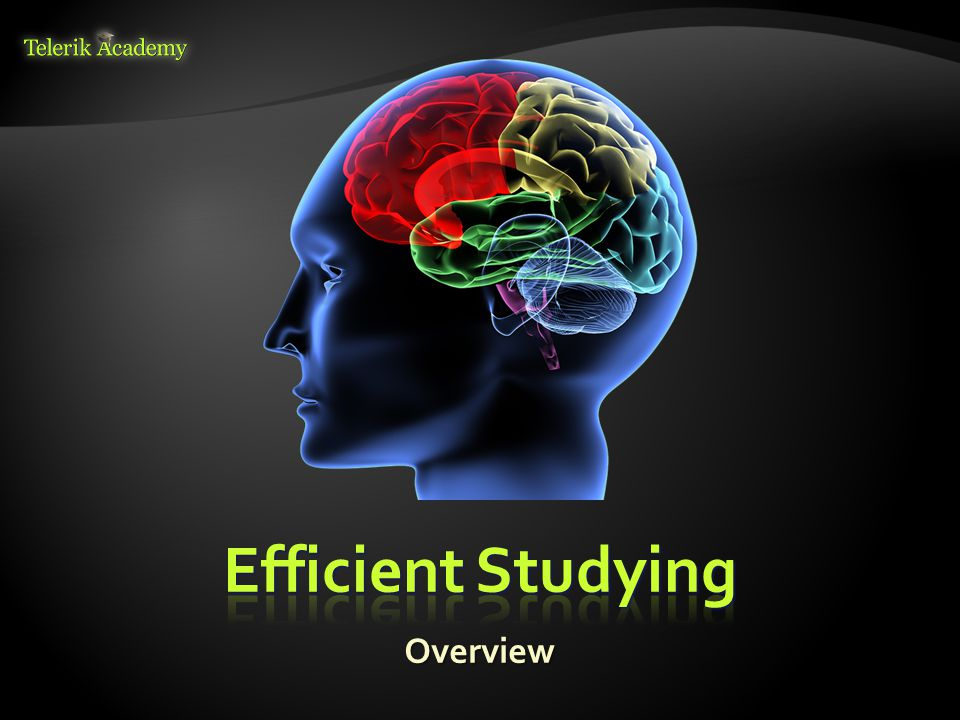 Efficient Studying Overview