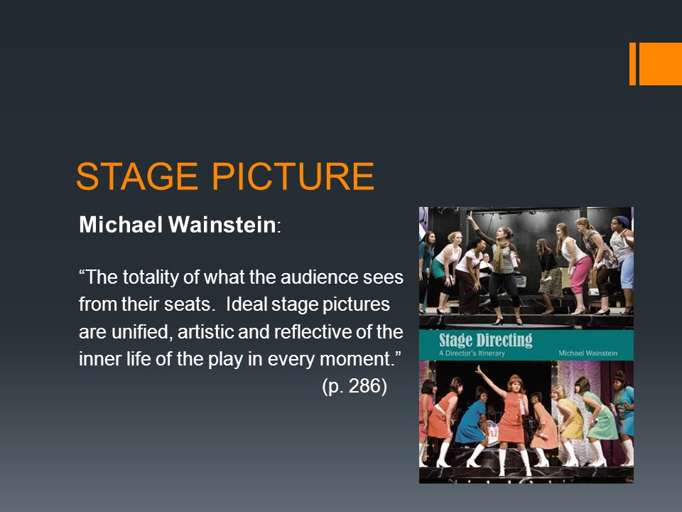 STAGE PICTURE Michael Wainstein: