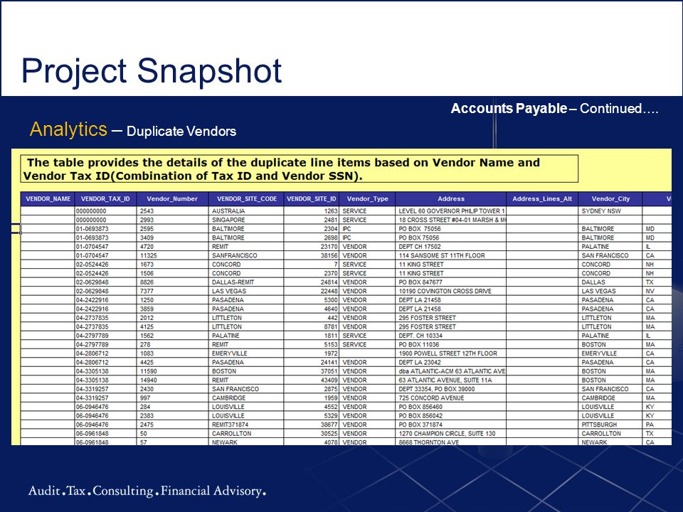 Project Snapshot Analytics – Duplicate Vendors
