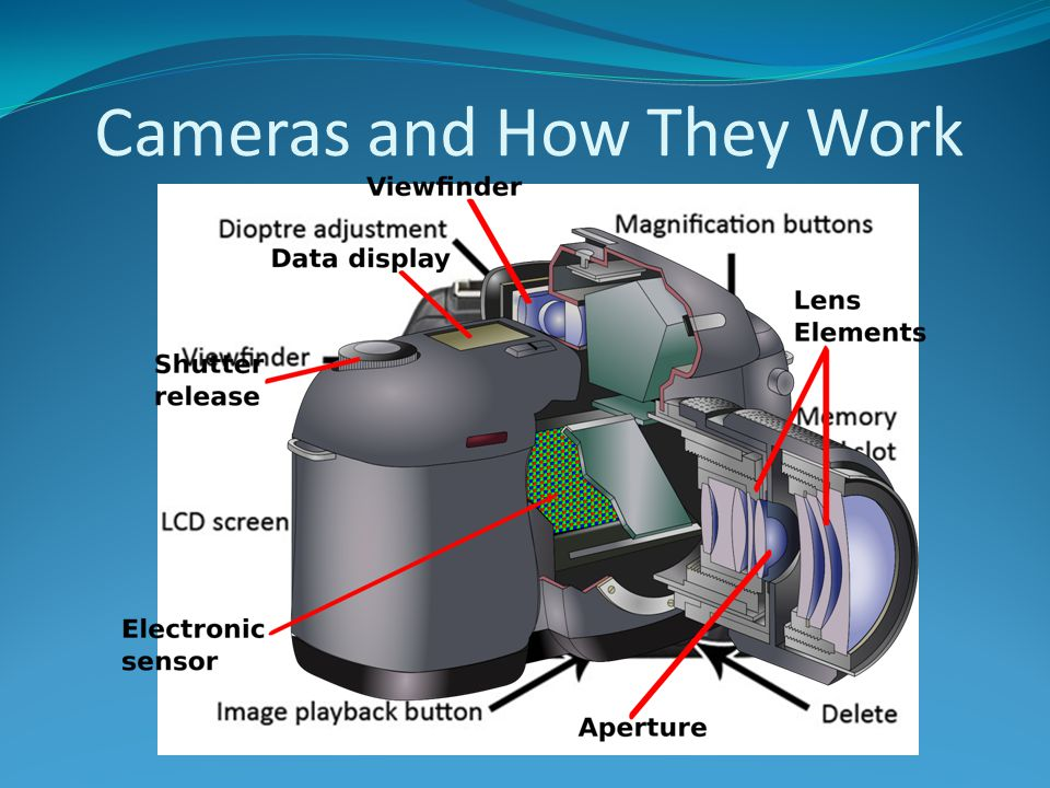 Cameras and How They Work