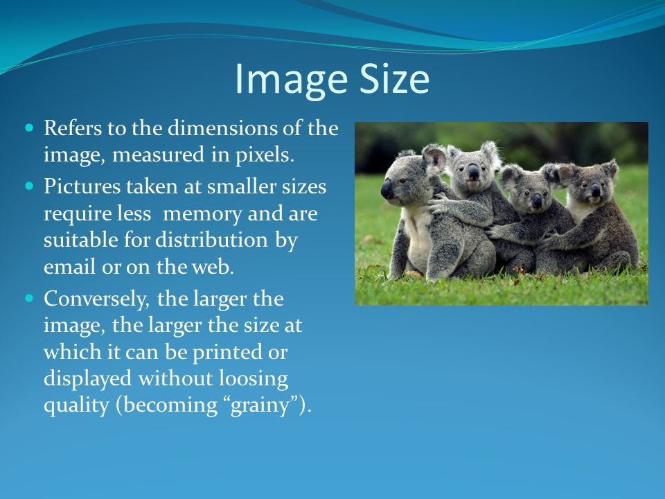 Image Size Refers to the dimensions of the image, measured in pixels.