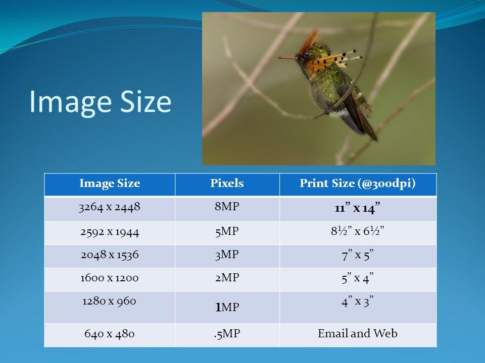 Image Size 1MP 11 x 14 Image Size Pixels Print Size (@300dpi)
