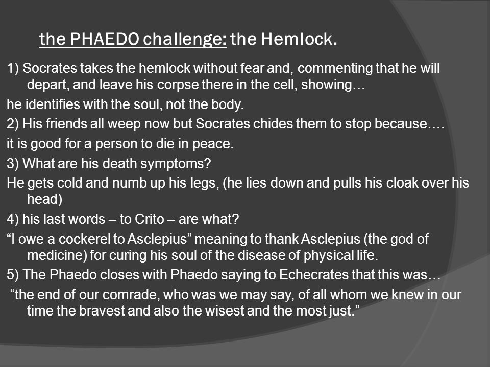 the PHAEDO challenge: the Hemlock.