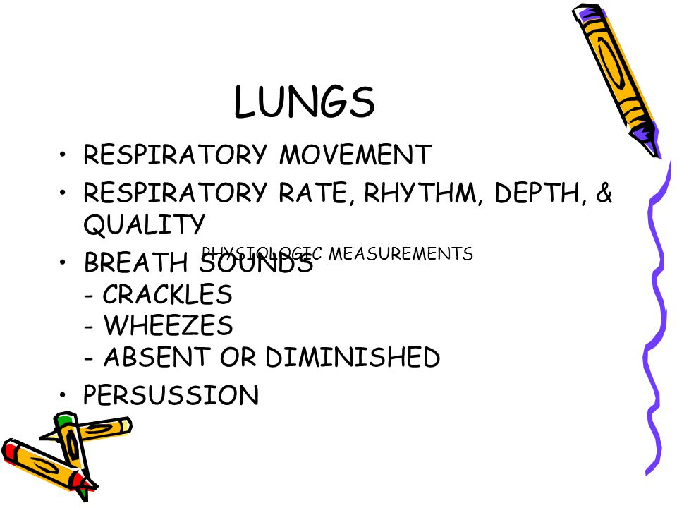 LUNGS RESPIRATORY MOVEMENT RESPIRATORY RATE, RHYTHM, DEPTH, & QUALITY