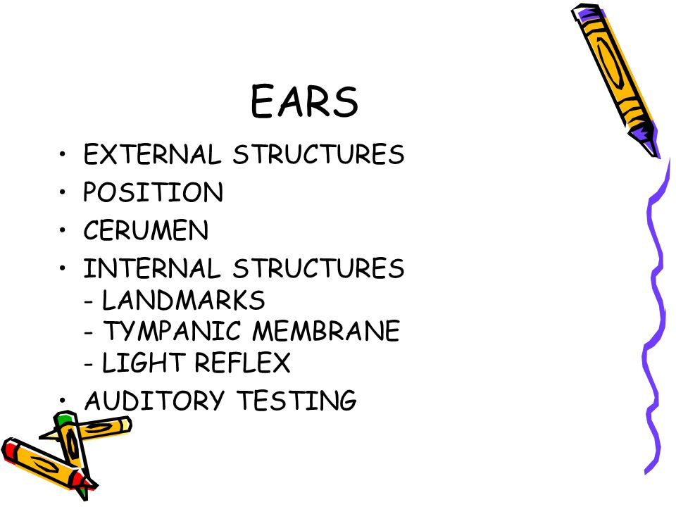 EARS EXTERNAL STRUCTURES POSITION CERUMEN