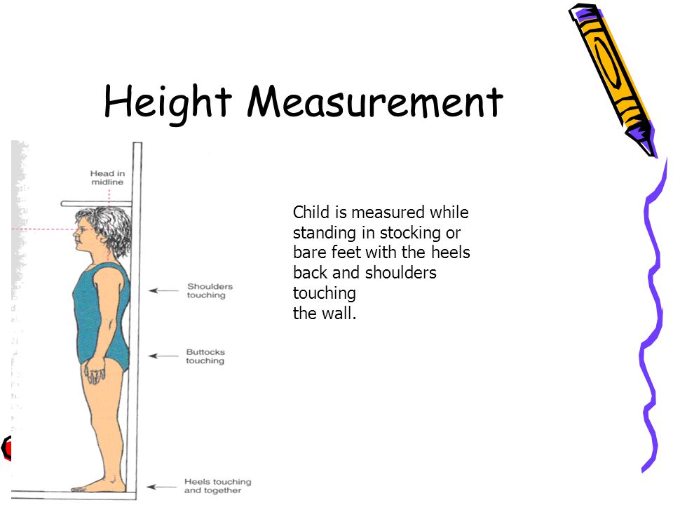 Height Measurement Child is measured while standing in stocking or